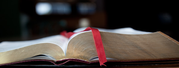 insights-on-the-bible